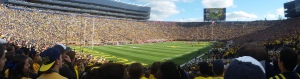 Attending events Michigan football games made NCAA athletics seem like a fantasy. Here is a photo I took from the Big House I took earlier this year.
