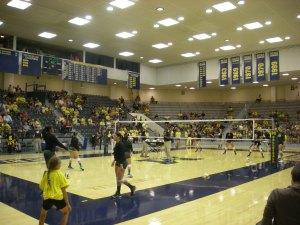 Oregon_vs._Michigan_volleyball_2013_03
