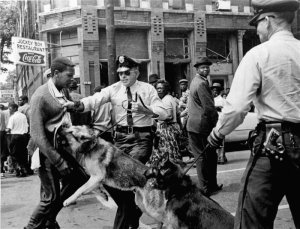 Protests were told not to fight back against the violence, this way, people can see how inhumane society is. Men forcing dogs to attack other men, that's really civilized...